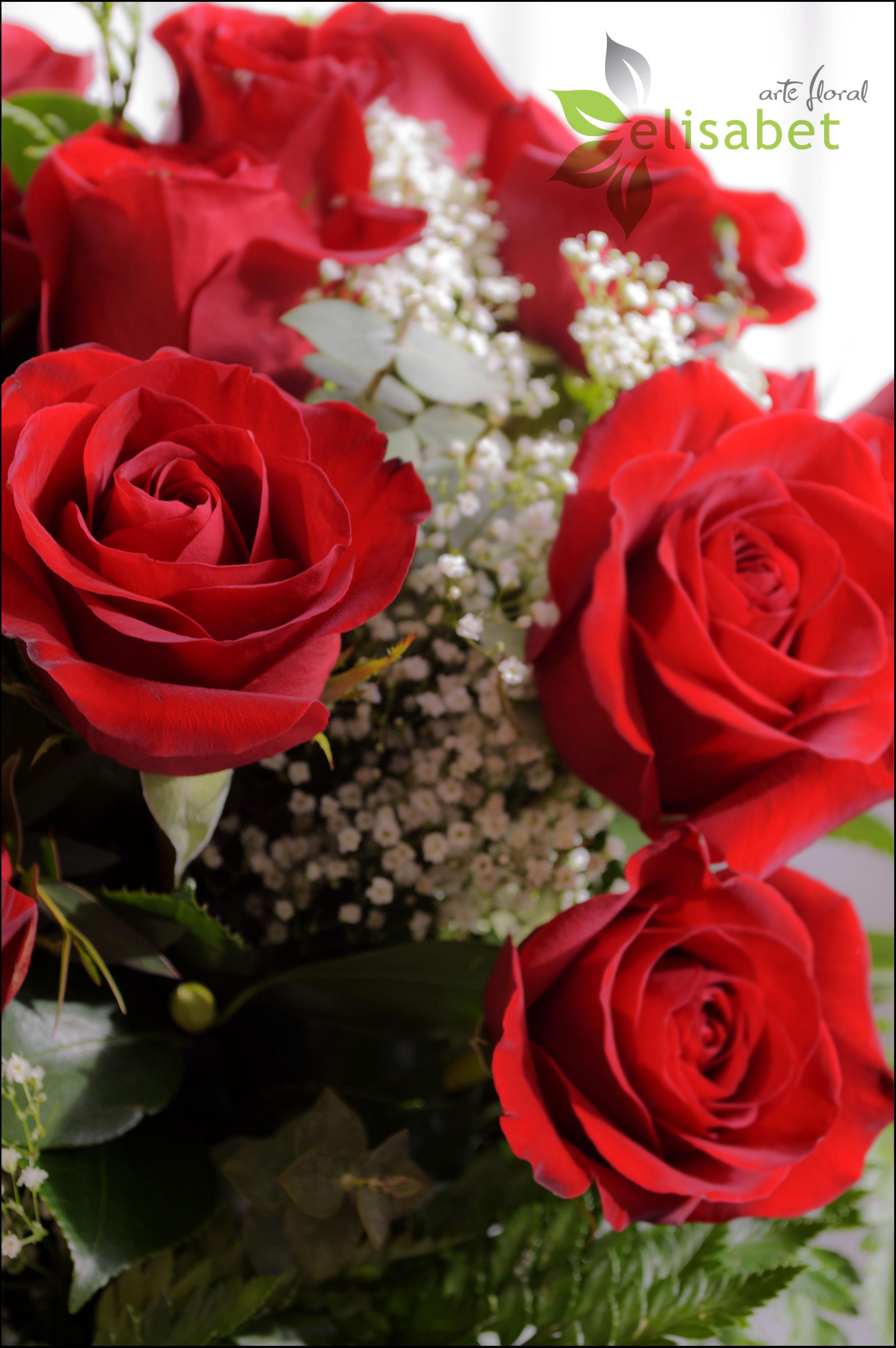Fotos en hd de ramos de rosas rojas grandes rosas rojas - Ramos de flores grandes ...