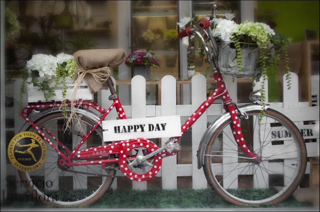 Bicicleta Happy Day