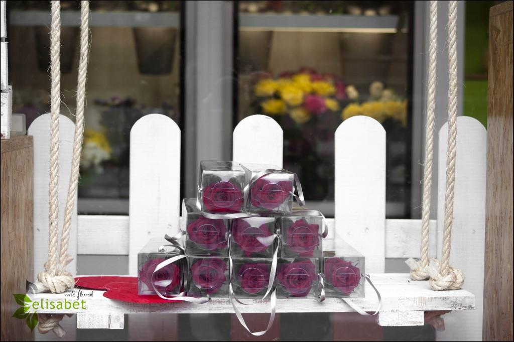 Columpio y rosas eternas